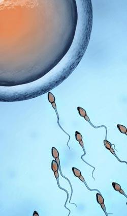 fivet-centro-di-infertilita-sun-1
